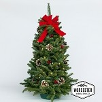 28in Twinkle Tabletop Tree | Christmas Tree